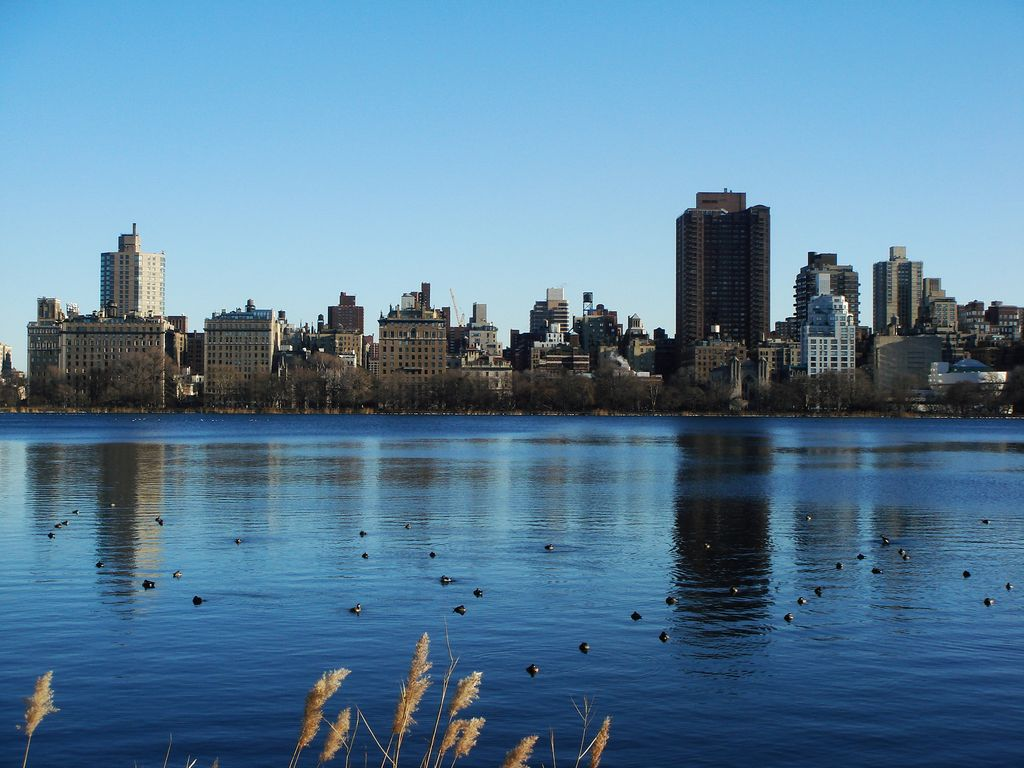 New Years Day in Central Park