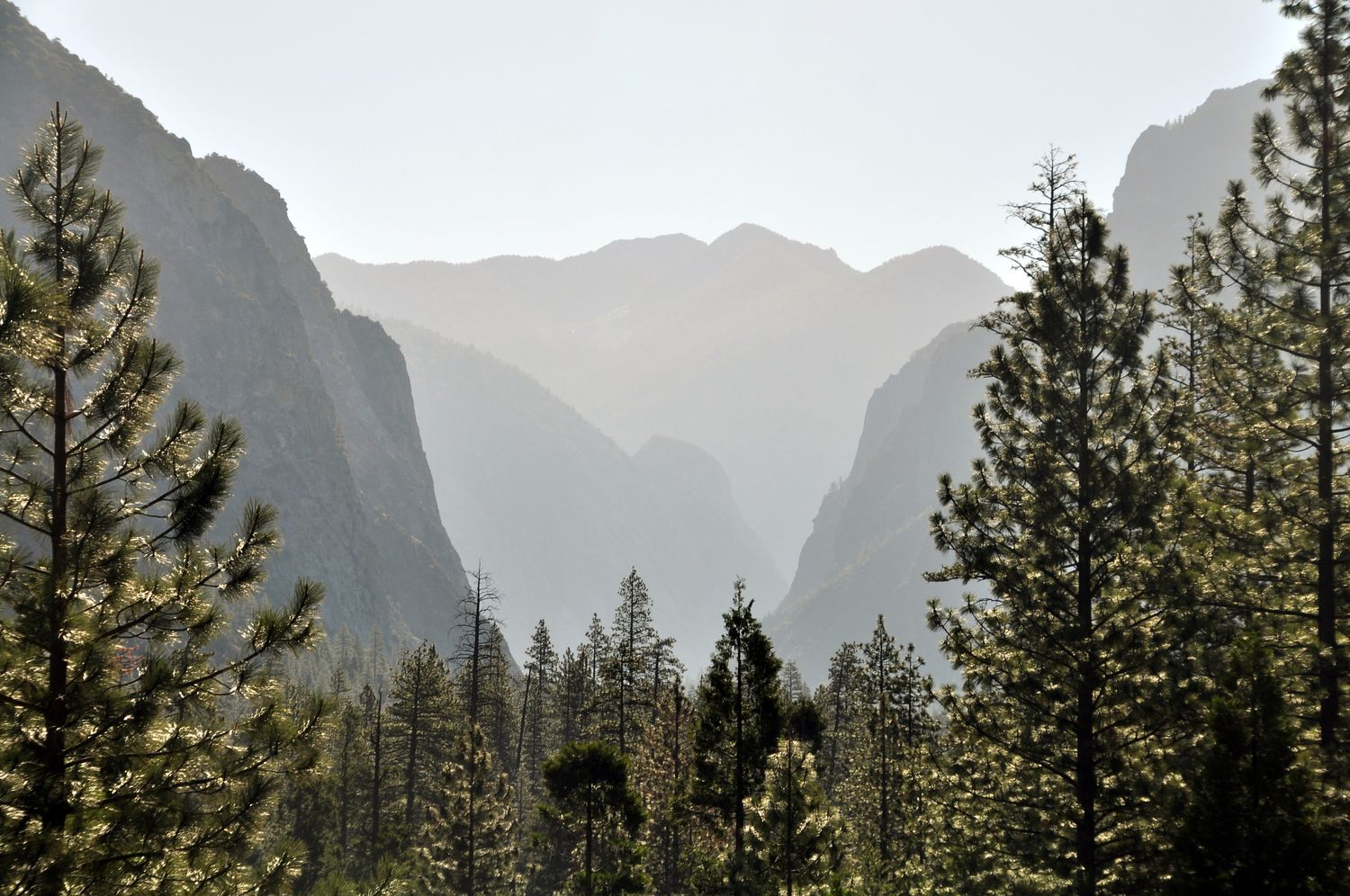 kings canyon 01