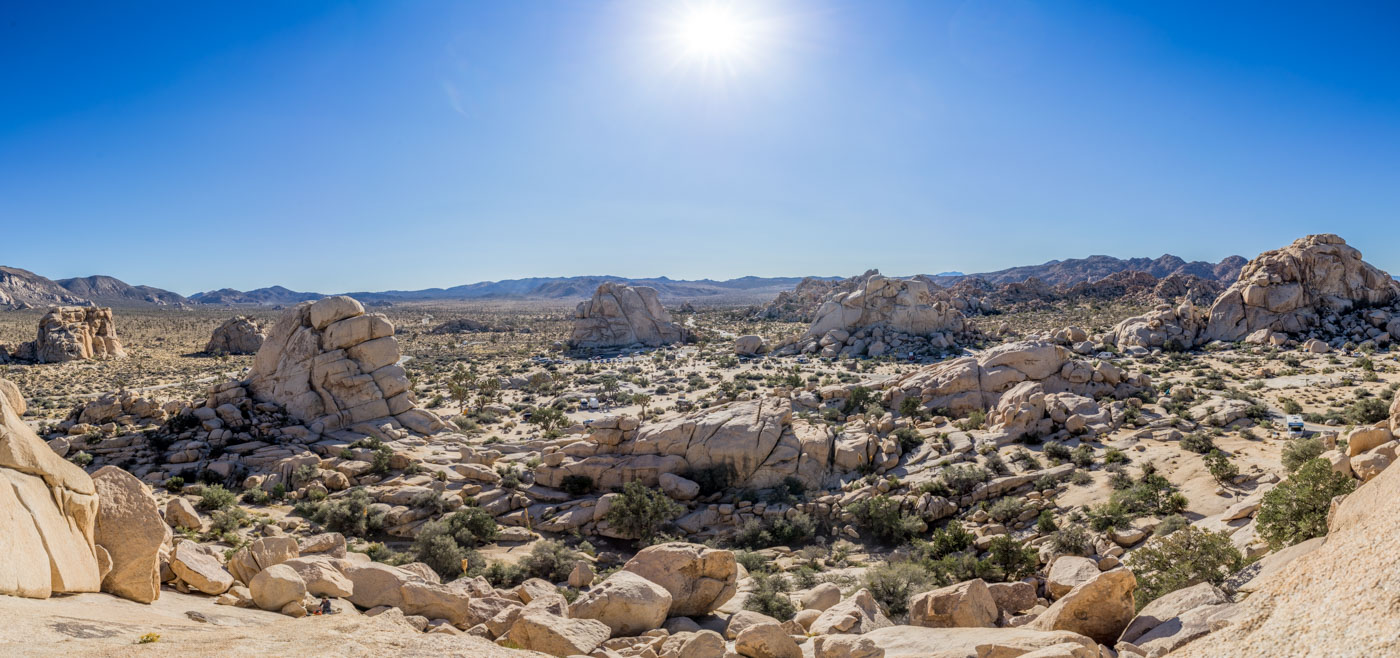 joshua tree np 14